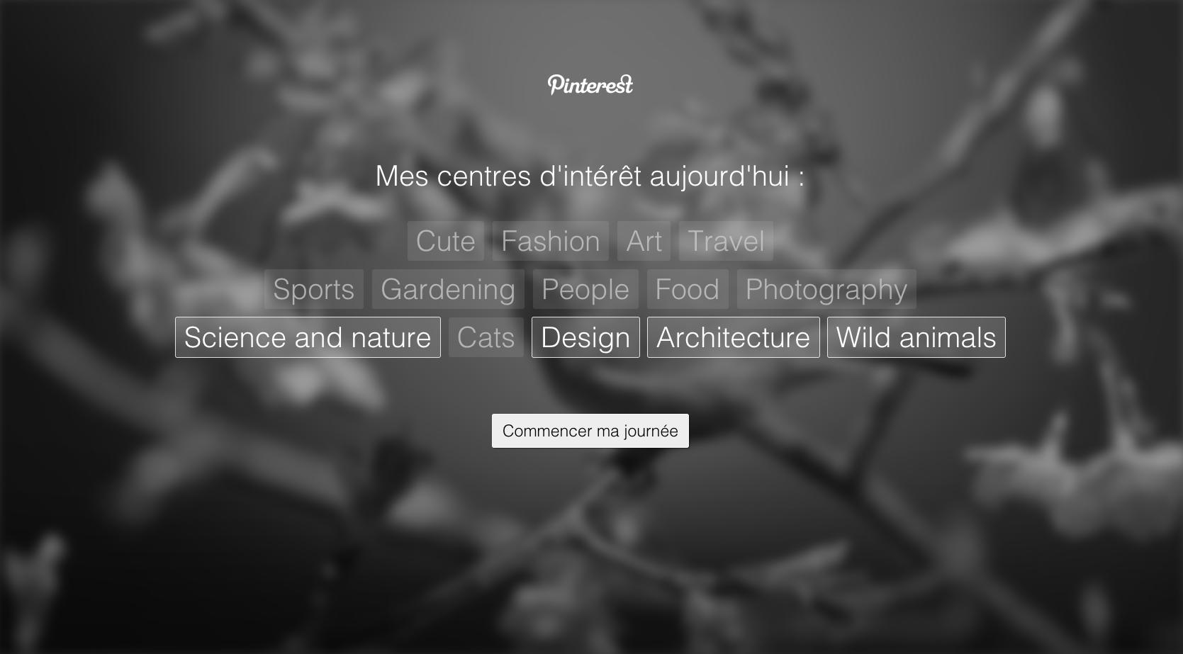 categories-pinterest-tab